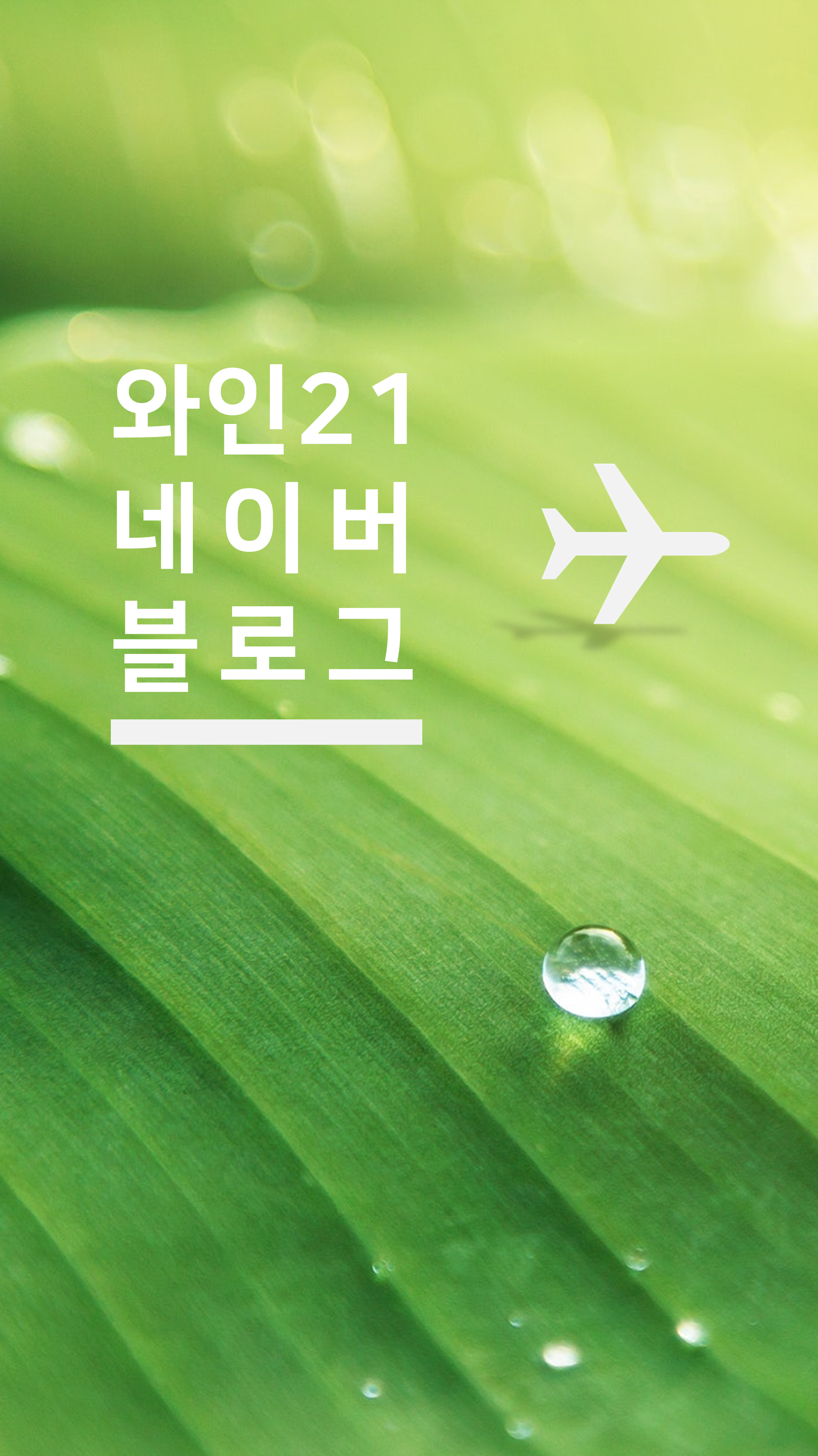 와인21닷컴 네이버블로그