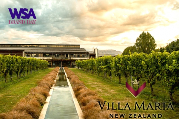 8/13(금) 국내 최초, 최대 와인 아카데미, WSA와인아카데미에서 빌라 마리아(Villa Maria) 브랜드 데이가 열립니다 !