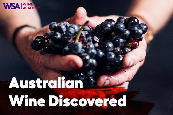 10/1(금) Australian Wine Discovered - 호주 와인 마스터 과정
