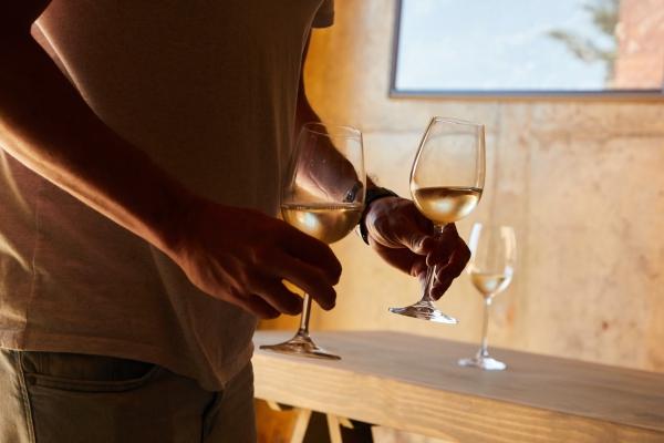 미국와인 탐구생활 9편 - 컬트 와인, 부럽지 않아! 착한 컬트 베스트15